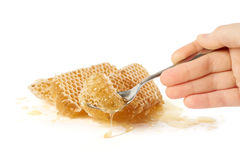 Taking a piece of honey Stock Images
