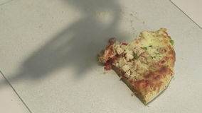 Taking pizza pieces stock video footage