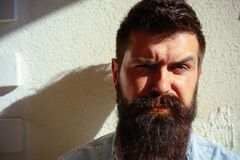 Taking pride and care in the beard. Bearded man with stylish hair outdoor. Handsome man with fashion beard and mustache royalty free stock photo