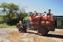 Taking produce to market in Myanmar. Royalty Free Stock Image