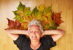 Taking a rest on maple leaves Royalty Free Stock Photos