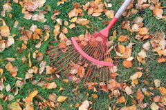 Taking a rest from raking the leaves Stock Photos