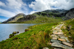 Taking the Rocky Path Royalty Free Stock Image