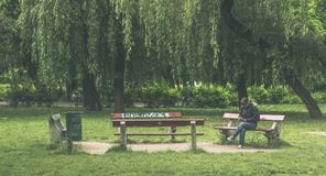 Taking some time in Budapest. Relaxing in a park`s banch araound Budapeste surround by nature Stock Photo