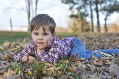 Little boy laying in the leaves Royalty Free Stock Photo