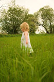 Taking a walk through long grass Royalty Free Stock Image