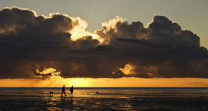 Taking a walk at sunset. A couple taking their dog for a walk in front of a romantic sunset Stock Image