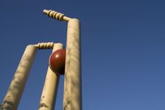 Taking a wicket (room for text). Cricket stumps shattered against clear blue sky Royalty Free Stock Images