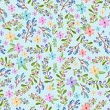 Takjes en bloemenpatroon Royalty-vrije Stock Afbeeldingen