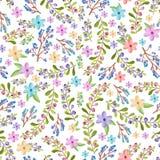 Takjes en bloemenpatroon Stock Afbeeldingen