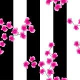 Takjes van een roze orchidee op een donkere achtergrond met wijd Zwarte strepen Naadloos patroon stock illustratie