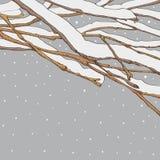 Takken in de sneeuw Royalty-vrije Stock Afbeelding