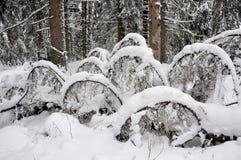 Takken die met sneeuw worden behandeld Royalty-vrije Stock Afbeeldingen