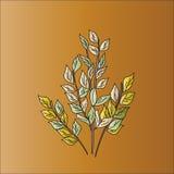 Takken met bladeren Royalty-vrije Stock Foto