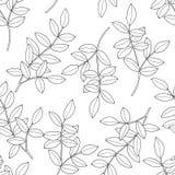 Takken met bladeren Naadloos patroon Hand getrokken inktillustratie in de stijl van de lijnkunst Textuur voor druk, stof, textiel royalty-vrije illustratie