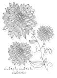 Takken met bloemen Stock Afbeeldingen