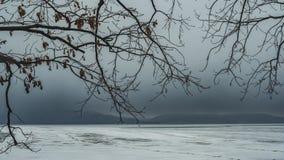 Takken van bomen in het bos met wolken in de winter tegen de achtergrond van bergen royalty-vrije stock foto's