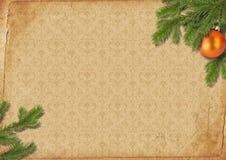 Takken van een Kerstboom op oude lpaper. Royalty-vrije Stock Foto