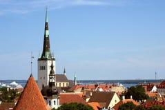 Taklägger av gammal stad av Tallinn Arkivbild