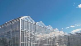 Taklägger växthuset på bakgrunden av blå himmel arkivfilmer