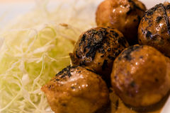 Takoyaki. Seaweed on takoyaki with Cabbage Royalty Free Stock Photography