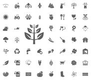 Takpictogram Het tuinieren en geplaatste hulpmiddelen vectorpictogrammen Stock Foto