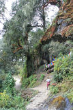 Taktshang - Paro - le Bhutan (2) Image libre de droits