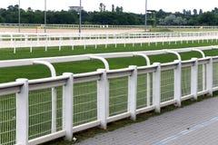 Taktująca zielona trawa gotowa dla cwału ściga się na bieżnym weekendzie zdjęcie royalty free