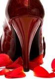 Talón del zapato mujeril fotografía de archivo libre de regalías