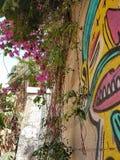 Tal aviv. Wall in tal aviv street art Stock Photos