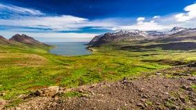 Tal, das vom arktischen Meer zu den Bergen, Island ausdehnt Stockfotos