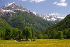 Tal in den Alpen Stockfotografie