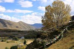 Tal in der tibetanischen Hochebene Stockbilder