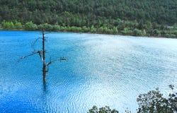 Tal des blauen Mondes, Lijiang, China Lizenzfreies Stockbild