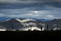 Tal des Nebels, Wolken in der Wüste Lizenzfreie Stockbilder