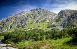 Tal in hohem Tatras, Slowakei Lizenzfreie Stockbilder