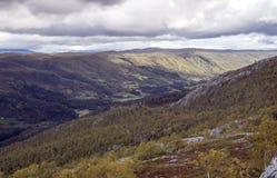 Tal im Grasland südlich von Norwegen Lizenzfreie Stockfotografie