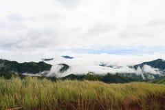 Tal im Nebel Stockfotografie