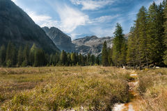 Tal Mountain View Adamello-Presanella Gruppe Alpen, Genua Lizenzfreies Stockfoto