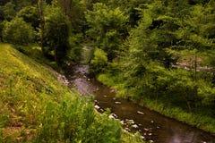 Tal Pilske-udoli und der Fluss Bela Stockbilder
