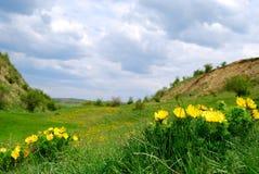 Tal in Transylvanien Stockfotos