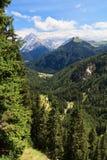 Tal Trentino - Duron stockbild