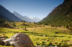 Tal von Pamir Stockfoto