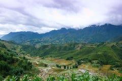 Tal von Reis-Terrassen-Feldern stockbild