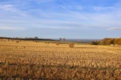 Tal von York-Landwirtschaft Lizenzfreies Stockfoto