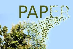 Tala de árboles para la fabricación de papel fotos de archivo