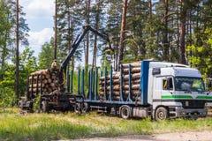 Tala de árboles y cargamento automatizado sobre un vehículo del camión foto de archivo libre de regalías