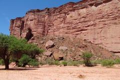 Talampaya Canyon, Argentina Royalty Free Stock Images