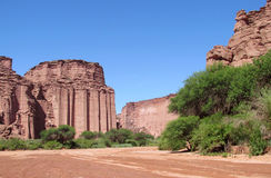 Talampaya röd kanjon och gröna treees Royaltyfria Bilder