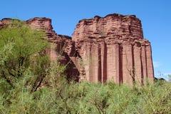 Talampaya red Canyon wall behain the green trees Royalty Free Stock Photography